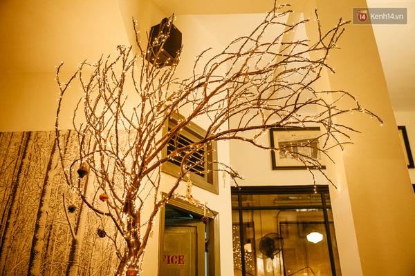 Chỉ là một nhánh cây khô được giăng đèn nhưng lại cực kỳ đẹp và sang trọng.