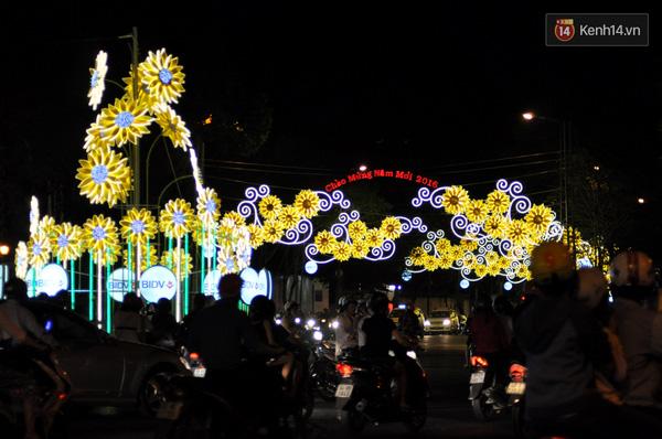 Những hoa hướng dương lung linh chào đón năm mới.