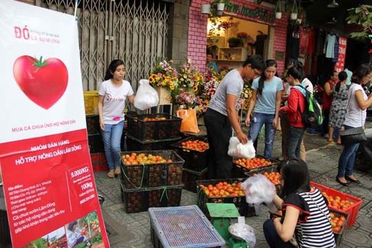 Quầy bán cà chua phi lợi nhuận của các bạn trẻ trên đường Trần Quang Khải (quận 1) được nhiều người ủng hộ