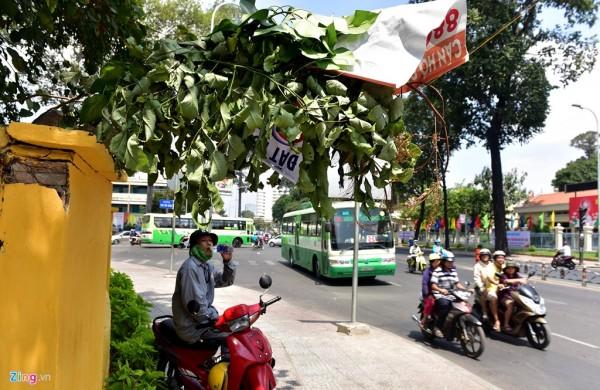 Tại ngã 3 Đình Tiên Hoàng-Phan Đăng Lưu (quận Bình Thạnh), ông Hoàng Văn Xẻng, làm nghề xe ôm phải dùng cành cây, tấm bảng quảng cáo che bớt nắng trong khi đợi khách.