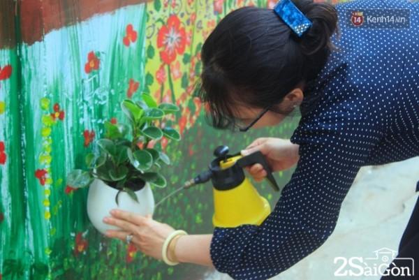 """Hàng ngày cô Trang thường tranh thủ thời gian rảnh rỗi để tưới các chậu cây trên tường, cô nói: """"Mấy đứa nhỏ đã kỳ công tạo nên một bức tường đẹp như vậy, thì mình phải có trách nhiệm giữ gìn nó chứ""""."""