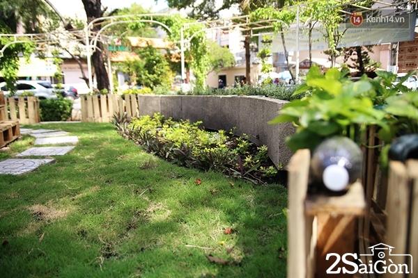 Khu vực sau khi đã được trồng cỏ và hoa.