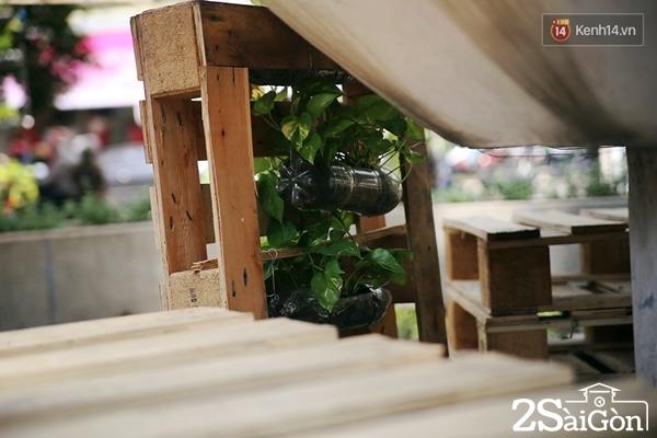 Những chậu cây này được treo khắp mọi nơi, bên dưới những kệ bằng gỗ pallet để trông đẹp mắt hơn.