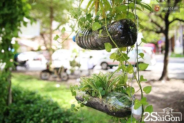 Những bình hoa bằng chai nhựa thân thiện với môi trường được treo xung quanh công viên.