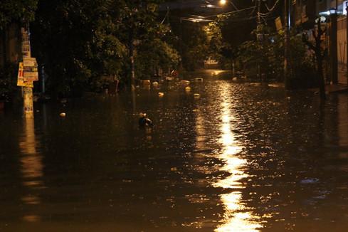Đường Tô Hiệu nằm cạnh con kênh Tô Hiệu nên mỗi khi mưa, nước kênh tràn vào nhà dân bốc mùi hôi thối.