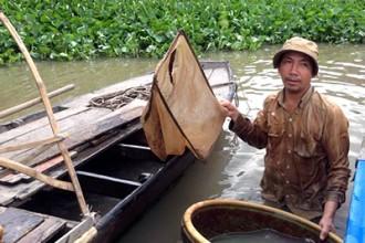 Bắt giun, nghề mưu sinh cùng cực giữa lòng sông Sài Gòn 1