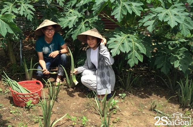 Bỏ cơ hội ở Singapore, cô gái Việt về Sài Gòn bán nước mát 1