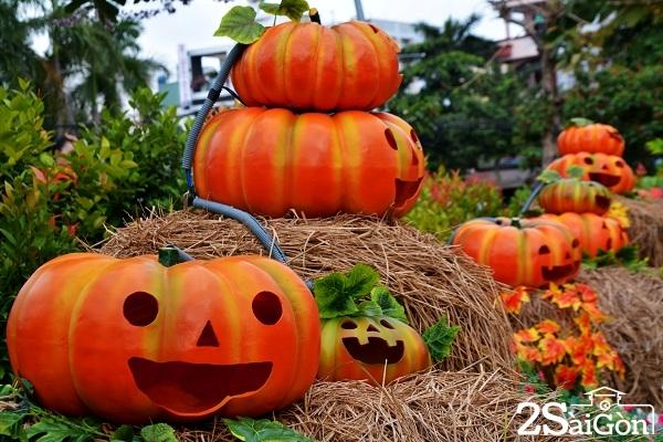 1.Vườn bí ngô Bình Tân như là điểm check in mới dịp Halloween này, thay vì trước đó phải chật vật với chuyện xuống phố Tây Bùi Viện để tham gia cùng những bữa tiệc hóa trang rùng rợp.