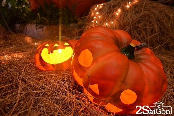 6.Khi đến vườn Bí Ngô Bình Tân bạn sẽ tìm thấy một không gian đáng sợ cả một khu vườn bí ngô lớn, được dựng lại như một ngôi làng thu nhỏ với sự đa sắc trong cách phối trí ngày lễ Halloween.
