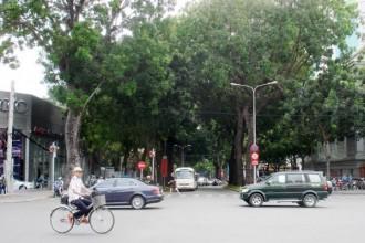 Con đường liên quân Pháp - Tây Ban Nha từ sông Sài Gòn tiến vô tấn công thành Gia Định, thời đầu thuộc Pháp mang tên Boulevard Citadel (đại lộ Thành),  nay là đường Tôn Đức Thắng - Ảnh: M.C.