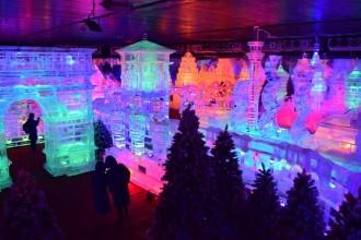oàn cảnh khu triển lãm băng đăng được triển lãm tại công viên văn hóa Đầm Sen.