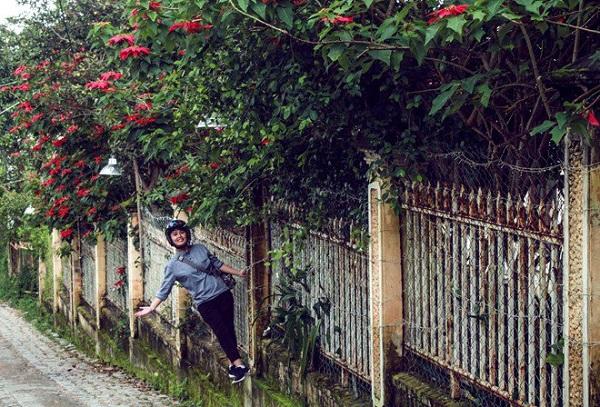 Nếu bạn ở lại Đà Lạt lâu lâu, hãy dành thời gian đi ra khỏi trung tâm thành phố để tìm thấy nhiều ngóc ngách, không gian thiên nhiên đẹp đẽ ngoài mấy khu du lịch mất phí nhàm chán.