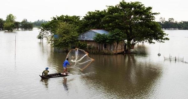 Đến mùa nước nổi, ruộng vườn, nhà cửa như chìm trong biển nước mênh mông - Ảnh: Sưu tầm
