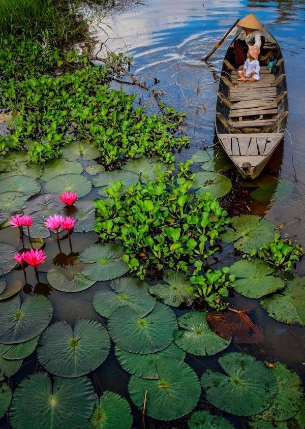 Trong thế giới nhơ bé và trong trẻo, khúc sông quê là cả một thiên đường - Ảnh: Baotayninh