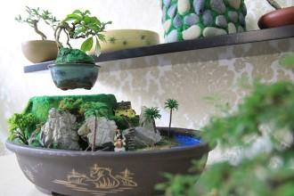 Ngoài những mẫu bonsai bay có sẵn, khách có thể đặt hàng theo yêu cầu. Ảnh: Happy Trees.