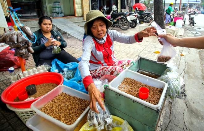 """Cô Lành (54 tuổi) là một trong những người bán ở đây lâu nhất, với thâm niên gần 20 năm. Giải thích về sự ra đời của chợ sâu bọ, cô nói: """"Từ trước năm 1975 ở đây đã là nơi chuyên bán chim, gà chọi… Sau đó, một số người mới đem sâu tới bán cho người ta mua về nuôi chim. Thấy bán được, có người nuôi rồi đem ra đây giao mối nên hình thành ra chợ""""."""