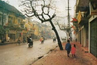 Đường phố ngày Tết
