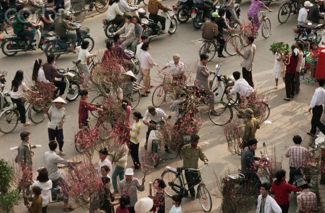 Người dân đi xe đạp xe máy đi mua đào mua quất