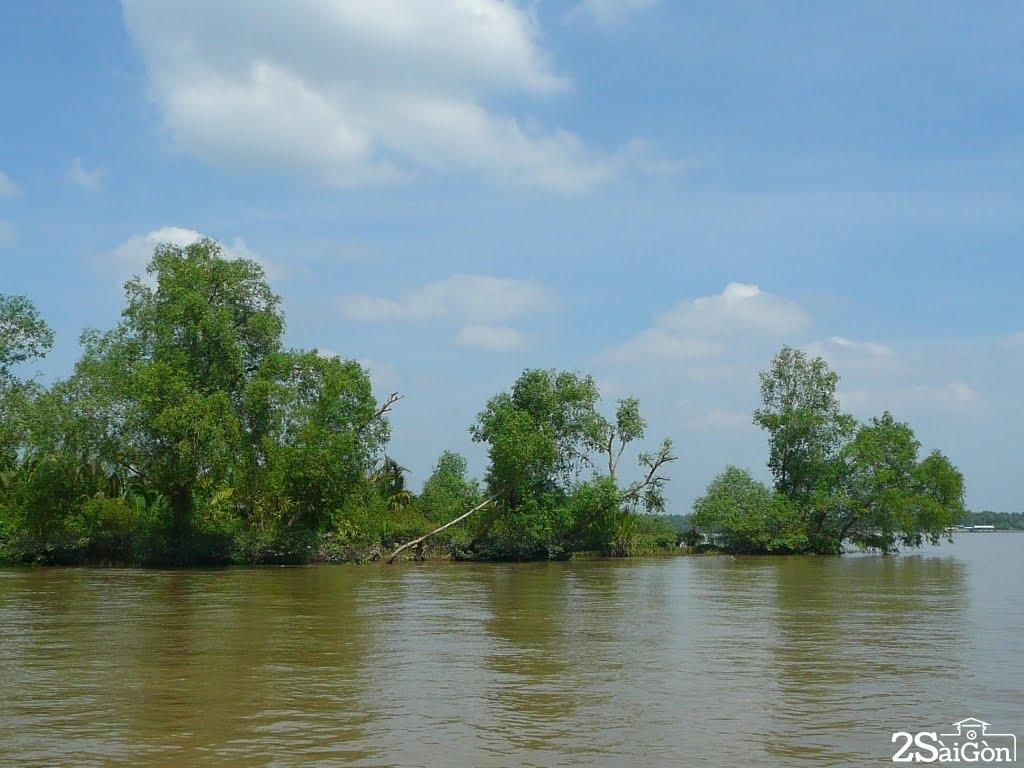 Tôi  đã từng ngồi chết lặng trên bến trong một buổi sớm mainhìn theo bóng con đò dọc dần khuất ngã ba sông