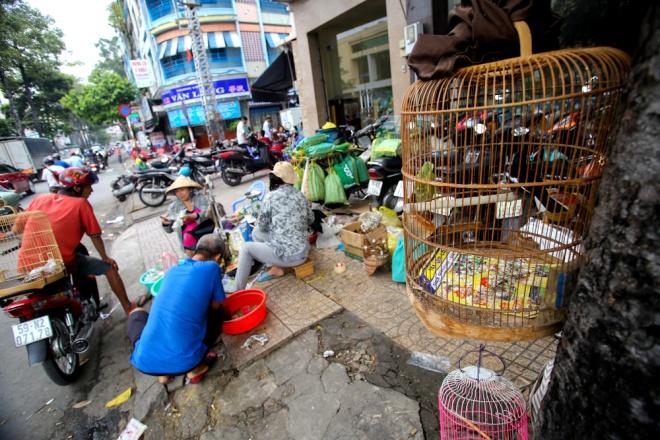 Phong phú hơn, nhiều người bán sâu bọ còn bày thêm cả lồng, thức ăn, dụng cụ nuôi chim…