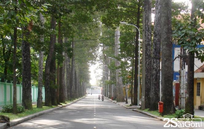 Đường Nguyễn Bỉnh Khiêm