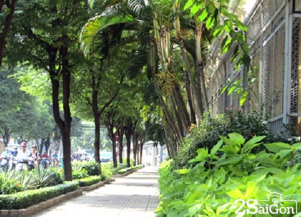 """Một góc đường Bà Huyện Thanh Quan, con đường rợp bóng cây đã từng đi vào thơ ca của người Sài Gòn xưa """" Đường bà Huyện hai hàng cây xanh ngát Đã chứng lời thú thật 'Anh yêu em"""" Hàng cây xanh thì trân trọng đứng chào  Những lá chết thì xôn xao dị nghị"""