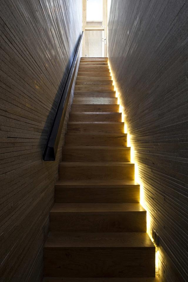Những phần không gian bị hạn chế ánh sáng tự nhiên được bổ sung bằng hệ thống đèn điện Sự tươi mát của cây xanh hòa hợp tuyệt đối với sắc trầm của nội thất