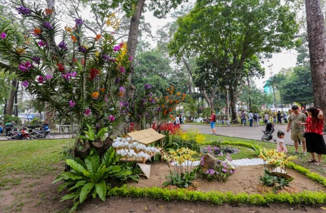 Một phần công viên làm khu vực trưng bày lan rừng quý hiếm như Thủy tiên, Long tu, Đại Ý thảo, Hạc đỉnh, Giả hạc...