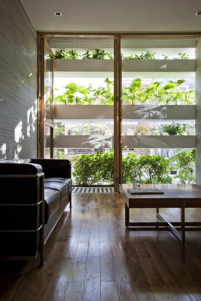 Sự tươi mát của cây xanh hòa hợp tuyệt đối với sắc trầm của nội thất