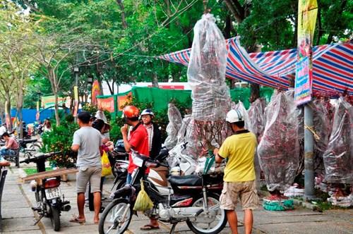Tại công viên 23/9 vào những ngày này, lượng người đến mua đào không ngừng tăng lên. Một khu vực dọc đường Lê Lai có hàng nghìn gốc đào được bao bọc kĩ.
