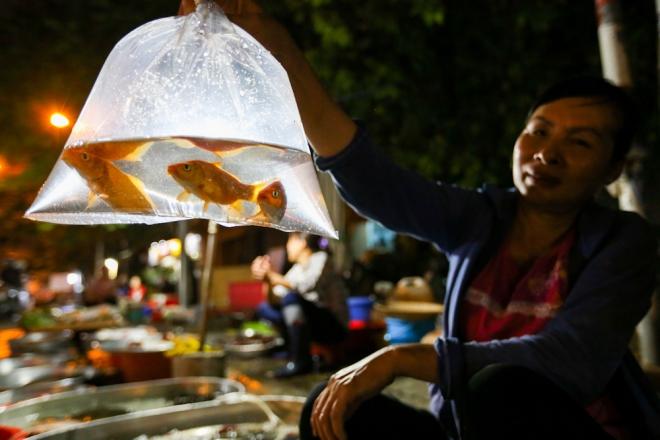 Tại chợ Tân Sơn Nhất (quận Tân Bình), các tiểu thương đều nhập thêm cá chép đỏ về bán. Họ thường cho 3 con vào một bịch và bán với giá 30.000 đồng.