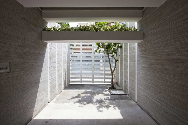 Gần như đứng bất cứ khoảng không gian nào trong nhà cũng có thể hít thở không khí trong lành