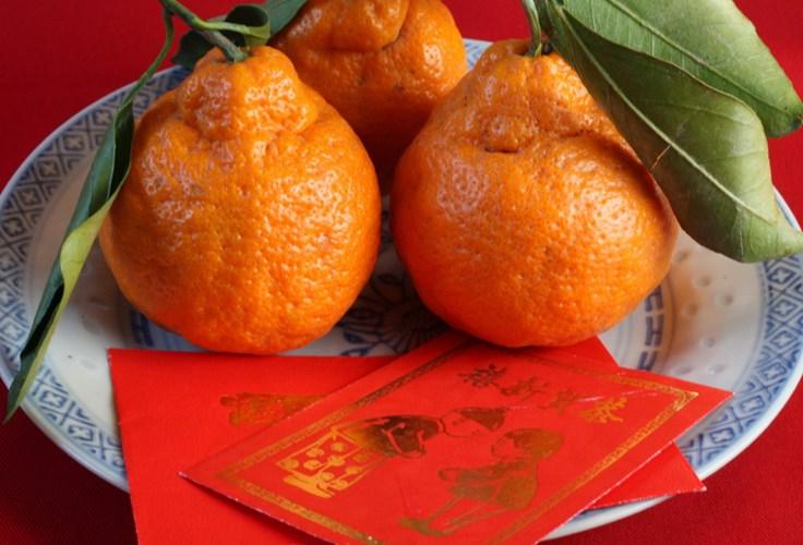 """Một nét đặc trưng trong ngày Tết của Trung Quốc là phong tục mang theo một túi cam quýt có bỏ kèm những phong lì xì mừng tuổi khi đến chơi nhà bạn bè, người thân trong hai tuần đầu năm mới. Trong tiếng Hán, chữ """"cam"""" phát âm gần giống như """"giàu có"""", còn chữ """"quýt"""" thì lại giống như """"may mắn"""". Đặc biệt, đối với những đôi vợ chồng trẻ mới cưới, hai loại trái cây này còn được coi như lời chúc sinh con đàn cháu đống"""