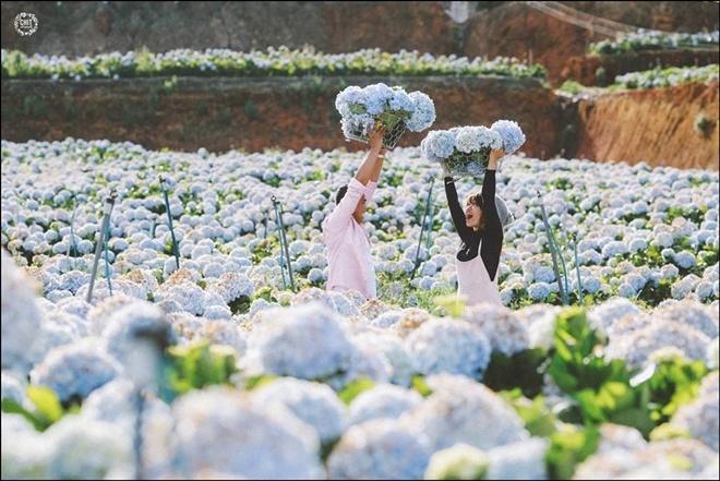 Hai bạn Duy Khánh và Kim Anh chọn nơi đây để ghi lại bộ ảnh cưới, được nhiều người chia sẻ trong mấy ngày qua. Ảnh: Chí Thiện.