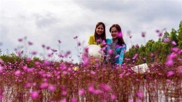 Thiếu nữ trong trang phục áo bà ba quấn khăn rằn đặc trưng của vùng sông nước miền Tây, đẹp dịu dàng bên loài hoa nhĩ cán. (Ảnh: Thanh Phong)