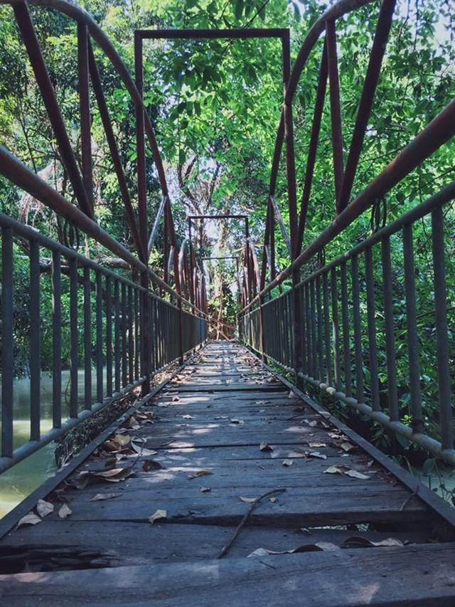 Khi đến với Thác Mai, bạn sẽ được thỏa thích tắm thác, khám phá rừng, trải nghiệm cảm giác lắc lư trên cây cầu bắt qua thác rất thú vị.