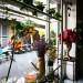 Cà phê Gác hoa nằm trong hẻm của phố Phạm Ngọc Thạch, quận 3, trung tâm Sài Gòn. Quán có bề ngoài giản dị, ít gây chú nhưng lại là điểm đến của nhiều khách ruột khi đã một lần tới đây.