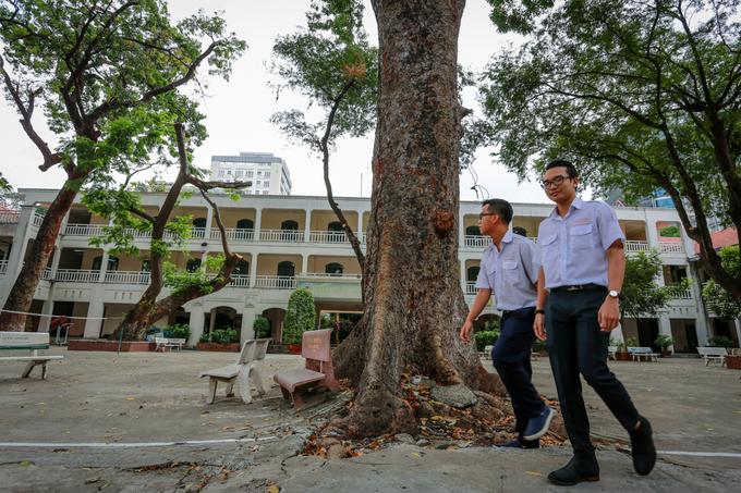 """""""Em rất tự hào về trường với những gốc cây khổng lồ và không gian xanh, sạch để nghỉ ngơi sau những giờ học căng thẳng"""", Thanh Tâm, học sinh lớp 12 trong trường, chia sẻ."""