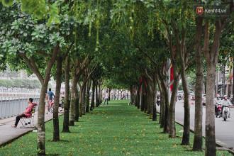 Trên 2 con đường ven kênh đẹp và xanh này, người Sài Gòn có thể dạo bộ, tập thể dục và vui chơi dưới những hàng cây xanh ngát.