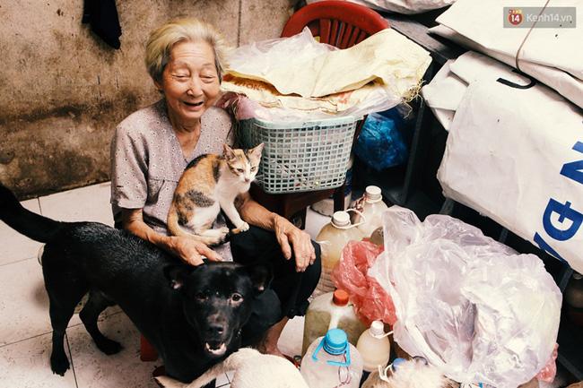 Sống đơn thân trong căn nhà xập xệ trên đường Đinh Tiên Hoàng (Q. Bình Thạnh), cụ Lê Thị Quý, 80 tuổi, quyết định đem những chú chó, mèo bị bỏ rơi về nuôi dưỡng. Thời gian gần đây, nhiều người lạ biết cụ hay nuôi chó mèo nên có lúc nửa đêm xích con chó già trước cửa, hoặc quẳng con mèo vào nhà để mặc ở đó. Người tốt hơn sẽ kèm thêm một túi thức ăn. Vì thế sau khi gửi 70 chú chó mèo xuống trại, lượng mèo nhà bà vẫn tăng lên dần dần, hiện nay đã gần 30 con.