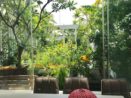 Khi tự thiết kế ngôi nhà đang ở, anh chị cũng quyết định làm vườn trên cao với tổng diện tích phủ xanh lên tới 200 m2. Gia đình phải tính toán kỹ việc chống thấm, phân chia các khu vực trồng cây cho hợp lý.