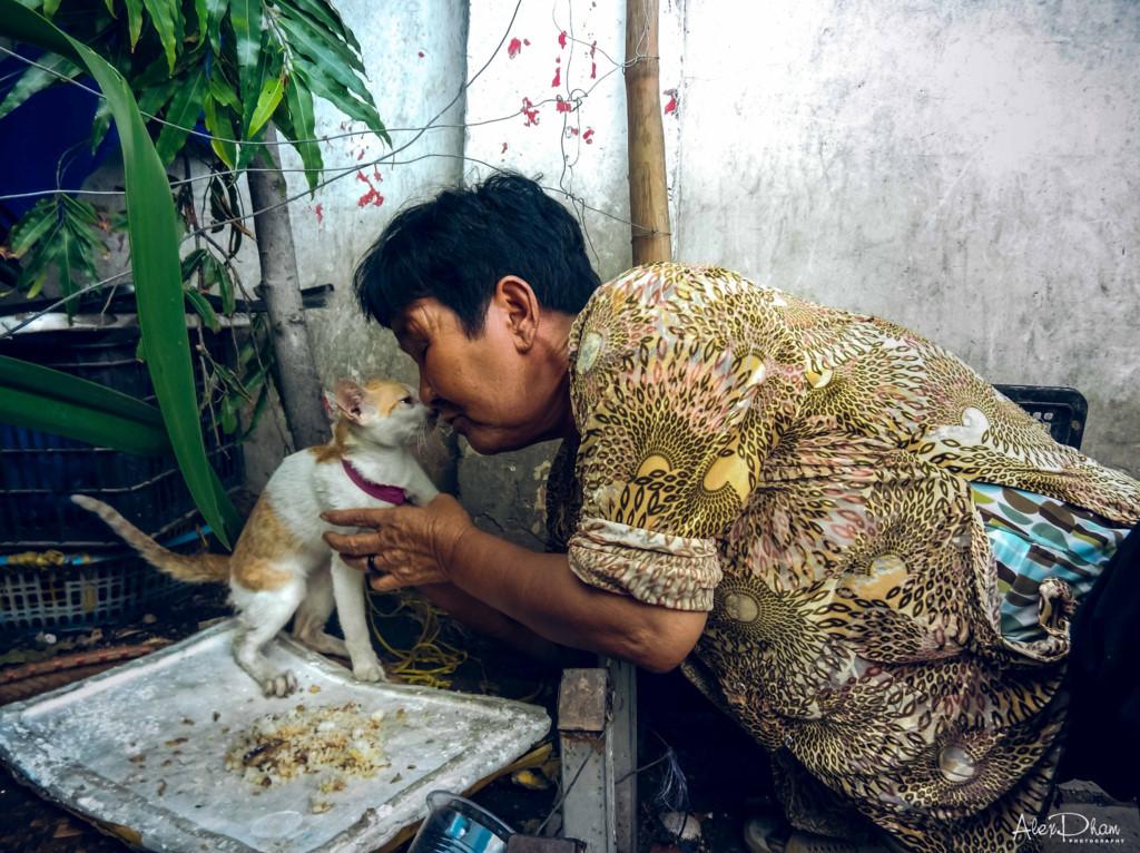 Hạnh phúc chẳng ở đâu xa, hạnh phúc là khi nhìn cụ bà chun mũi yêu thương với chú mèo lười ngoài hiên.