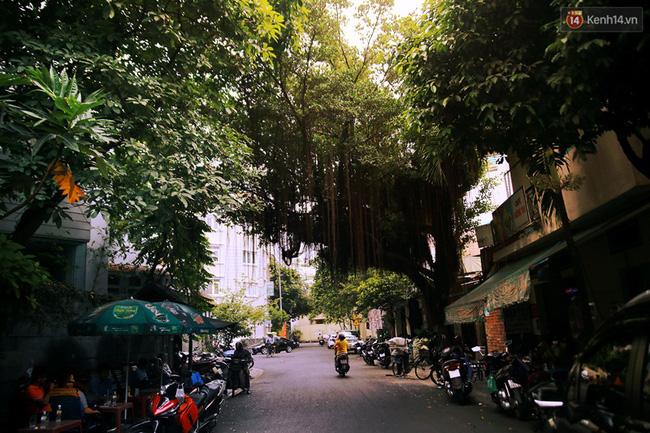Khác với vẻ ngoài náo nhiệt trên đường Phan Xích Long, các con đường bao bọc xung quanh tuyến đường này lại là những đường nhỏ rợp bóng cây, ít xe qua lại, không khí trong lành bất kể ngày đêm.