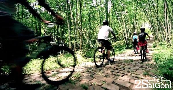 Là một phần của Khu bảo tồn thiên nhiên Nam Cát Tiên được UNESCO công nhận là Khu dự trữ sinh quyển thế giới, Khu du lịch sinh thái Rừng Madagui có diện tích khoảng 368ha là địa điểm lý tưởng cho du khách muốn khám phá núi rừng Tây Nguyên.