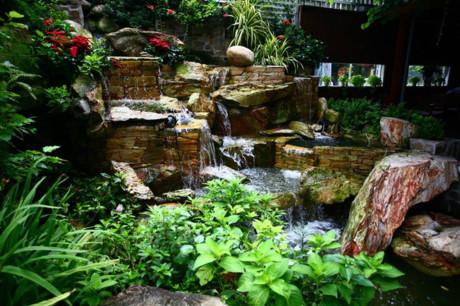 Không gian thoáng đãng, cây xanh và mặt nước là điểm nhấn chủ đạo của quán. Khách có thể tận hưởng một môi trường trong lành gần gũi với thiên nhiên.