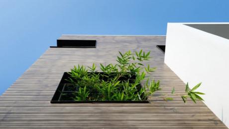 Ngôi nhà có nhiều ô vuông đan xen vào nhau kết hợp với cây xanh thu hút sự chú ý của nhiều người.