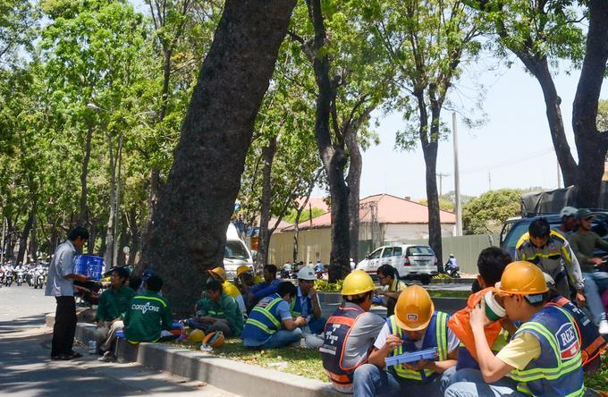 Hàng cây cổ thụ xanh bóng mát đường Tôn Đức Thắng từ lâu là hình ảnh quen thuộc với người dân Sài Gòn và gắn bó với cuộc mưu sinh của dân lao động.