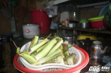 Trong nhiều bữa cơm, món chủ đạo của người dân nơi đây là rau lục bình thay cho rau muống. (Ảnh: Dương Thương)