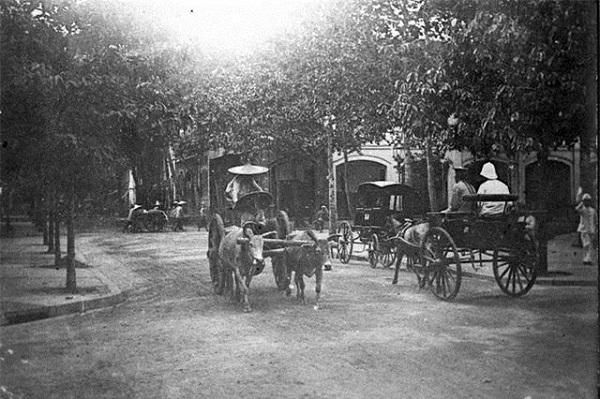 Đây là những bức ảnh mà KTS Đoàn Bắc tập hợp được trong kho ảnh tư liệu của anh và bố, nhà giáo Đoàn Thịnh. Những bức ảnh này có nguồn gốc từ bộ sưu tập của gia đình vị bác sĩ quân y người Pháp Louis Sadoul có mặt ở Việt Nam vào những năm 1860. Một số bức khác anh được nhà giáo Vũ Thế Khôi chuyển lại. Trong ảnh là giao thông trên đường Catinat. Ảnh chụp (năm 1890).