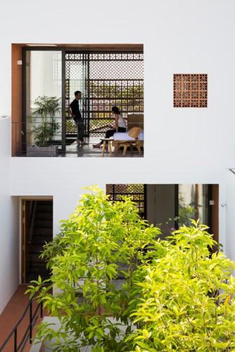 Bên trong nhà như một không gian xanh thu nhỏ giữa lòng thành phố.